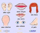 Year 4 Spanish - Parts of the head