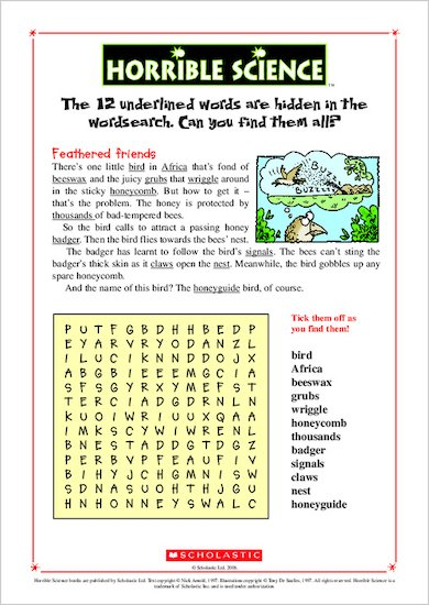 Horrible Science Wordsearch