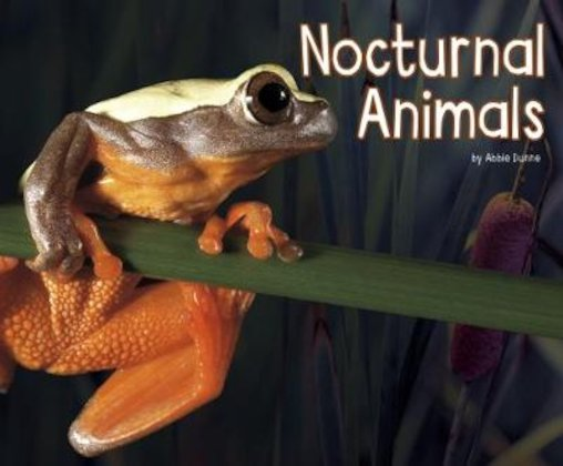 Life Science: Nocturnal Animals