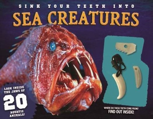 Sink Your Teeth Into: Sea Creatures