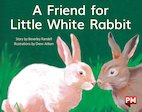 PM Yellow: A Friend for Little White Rabbit (PM Storybooks) Level 8