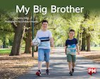 PM Yellow: My Big Brother (PM Non-fiction) Levels 8, 9