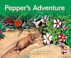 PM Green: Pepper's Adventure (PM Storybooks) Level 14 x 6