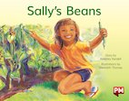 PM Yellow: Sally's Beans (PM Storybooks) Level 6 x 6