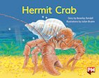 PM Yellow: Hermit Crab (PM Storybooks) Level 7 x 6