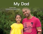 PM Yellow: Our Dad (PM Non-fiction) Levels 8, 9 x 6