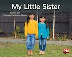 PM Yellow: My Little Sister (PM Non-fiction) Levels 8, 9 x 6