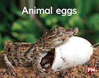 Animal Eggs (PM) Level 2