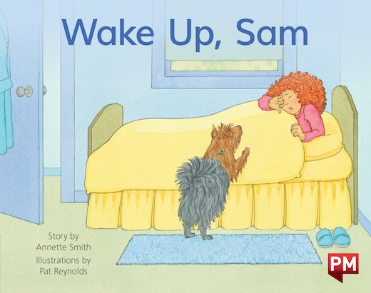 PM Red: Wake Up, Sam (PM Storybooks) Level 3 x6