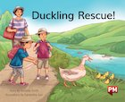 PM Green: Duckling Rescue  (PM Storybooks) Level 12