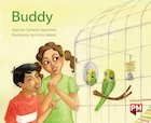 PM Green: Buddy (PM Storybooks) Level 14