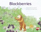PM Yellow: Blackberries (PM Storybooks) Level 6