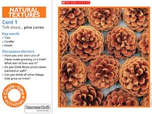 Natural textures circle-time cards