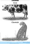 Cow and Cheetah (1 page)