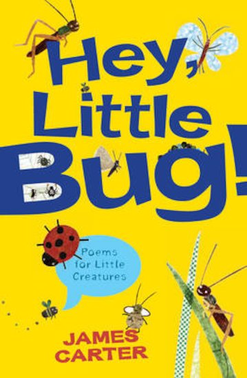 Hey Little Bug! Poems for Little Creatures x 30