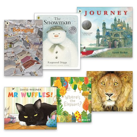 Wordless Picture Books Pack x 6