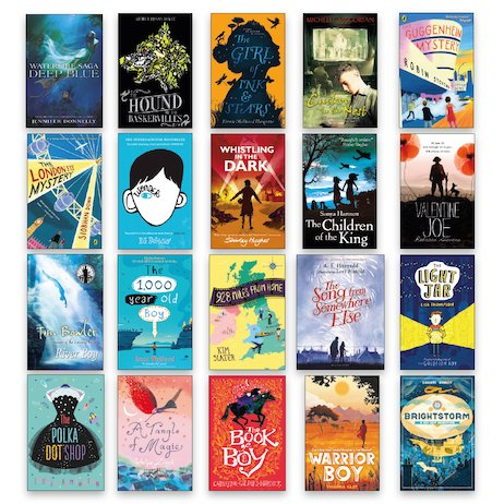 Gifted Readers Ages 11+ Pack x 20