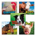 Pebble Plus: Farm Animals Pack x 5