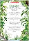 Mini who? – Minibeasts poem poster