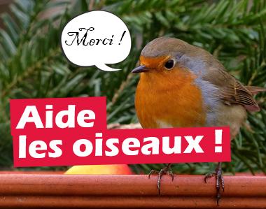 Aide les oiseaux !