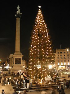elt trafalgar square  christmas tree.jpg