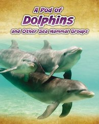 Animals in Groups: A Pod of Dolphins and Other Sea Mammal Groups