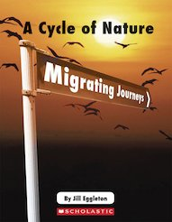 Connectors Ages 11+: A Cycle of Nature - Migrating Journeys x 6