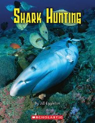 Connectors Gold: Shark Hunting x 6