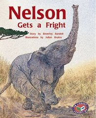 Nelson Gets a Fright (PM Storybooks) Level 19