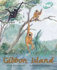 Gibbon Island (PM Plus Storybooks) Level 18