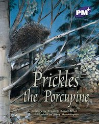 PM Purple: Prickles the Porcupine (PM Plus Storybooks) Level 19 x 6