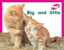 PM Magenta: Big and Little (PM Plus Starters) Level 2 x 6