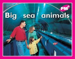 PM Magenta: Big Sea Animals (PM Plus Starters) Level 2 x 6