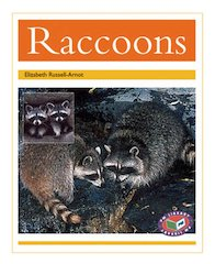 Raccoons (PM Non-fiction) Level 22