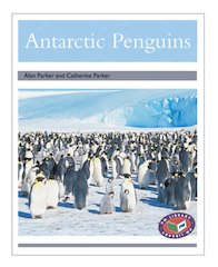 Antarctic Penguins (PM Non-fiction) Levels 23, 24