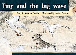 Tiny and the Big Wave (PM Storybooks) Level 8
