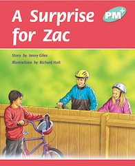 PM Turquoise: A Surprise for Zac (PM Plus Storybooks) Level 17 x 6