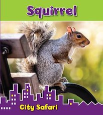 City Safari: Squirrel