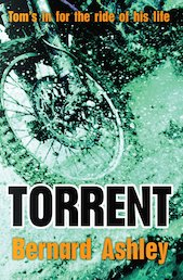 Barrington Stoke Teen: Torrent