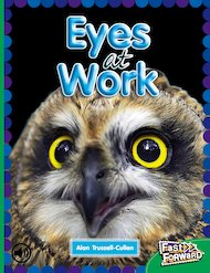 Eyes at Work (Non-fiction) Level 25