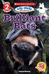 Icky Sticky Readers: Brilliant Bats
