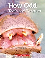 Connectors Silver: How Odd - Teeth and Tongues x 6