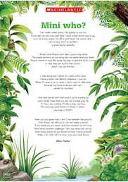 'Mini who?' - Minibeasts poem