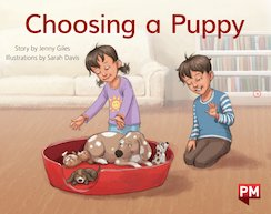 PM Yellow: Choosing a Puppy (PM Storybooks) Level 7 x 6
