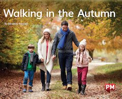 PM Green: Walking in the Autumn (PM Non-fiction) Levels 14, 15 x 6