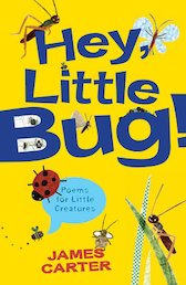Hey Little Bug! Poems for Little Creatures x 6