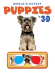 World's Cutest Puppies in 3D