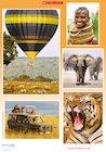 On safari – poster
