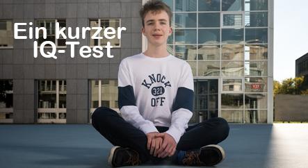 Ein kurzer IQ-Test