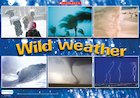 Wild weather – photo poster